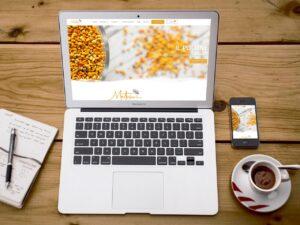 Consulente Web Marketing: Giacomo Mazzoni